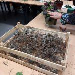 Maandelijkse bloemschikcursus